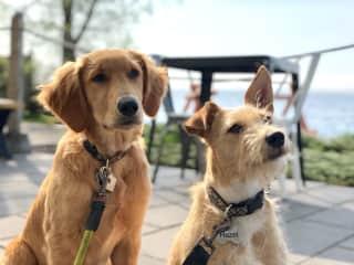 Loulou and Hazel