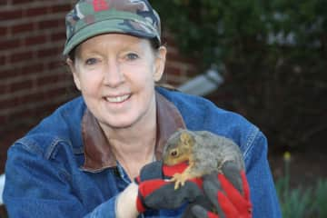 Not a pet, but a rescued squirrel taken to a wildlife rehabilitator