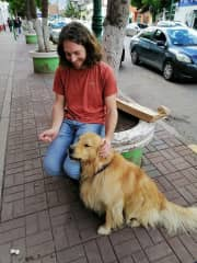A dog friend I met in Cusco, Peru. He followed me around the city for the entire afternoon. It was a dream come true!