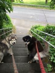 Luna and Floyd