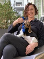 Precious Time with Puppy Rio (Trusted Housesit in Hollywood (04 March 2019 - 08 March 2019)