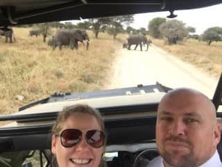 The amazing Serengeti in Tanzania