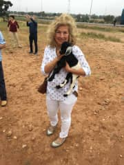 In Morocco with the goats in the Argon trees