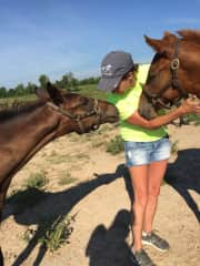 Robin helping with the yearlings on our daughters farm...aren't they precious!