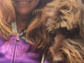 Selfie with Woody the labradoodle I have been walking since 2016. (See my external reference from Woody's Dad David)