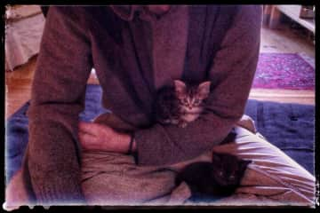 Kittens sometimes join Russell in his daily meditation.