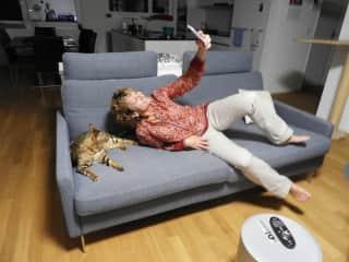 2018 Bengal cat sit in Switzerland