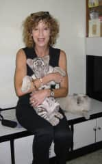 Me helping vet with 3 month old tiger cub feeding