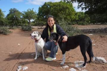 Essaouira, Morocco: Our afternoon walk with Daisy and Dottie.
