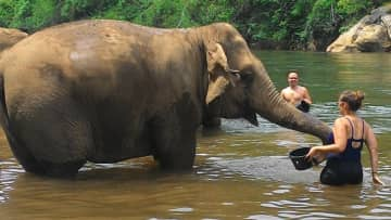 We're dedicated to eco tourism and experiences that do not hurt, but help. This was from our time at the Elephant Haven in Kanchanaburi, Thailand.