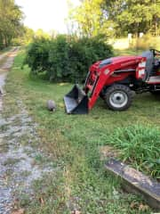 Our tractor comes in handy for home projects if we can keep the guinea hens off of it!