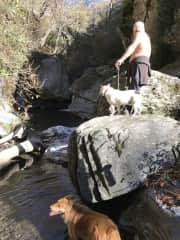 Pete walking Rastas in Sierra Nevada