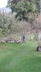 Maintaining a homeowners' beautiful garden