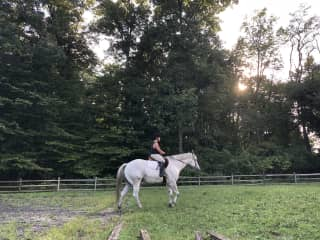 Taylor riding Oliver on a beautiful evening!