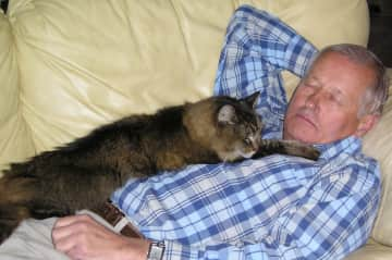 Catnappers on North Carolina house sit