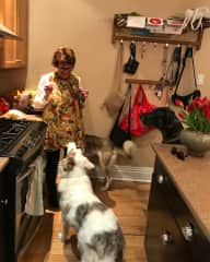 Beth with her three grand dogs.