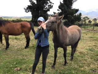 Nadya in a horse shelter in Ecuador