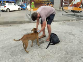 This stray dog in Sri Lanka was so dehydrated it was heartbreaking. 32c degrees!