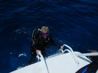 I'm an avid diver and scuba instructor