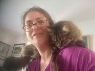 My Mom's cat loves to sit on my shoulders.