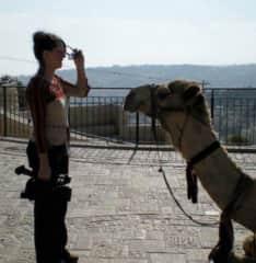 I know I left my camel somewhere...