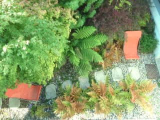 Landscape gardening is Pete's speciality - our most recent creation. Both keen gardeners.