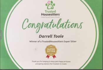 Super Sitter certicate from TrustedHousesitters