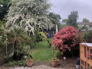 This is the garden in May. There's a table midway back for eating outside, and a BBQ available too.