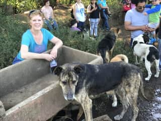 Lisa at a rescue dog park in Costa Rica