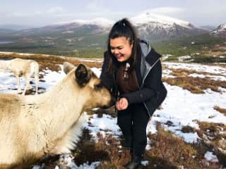 bonding with some reindeer in Scotland