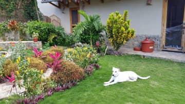 Blanca in her garden