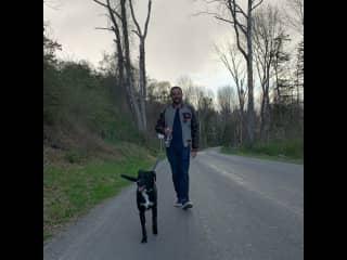 Walking Tracy