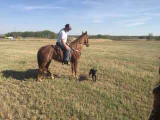 Doug, Diamond (horse) and Griz (puppyJ) riding in our pasture