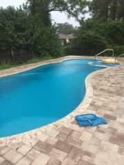 Backyard pool and spa