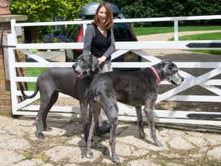 Katharine with Eric and Pammie, the Great Danes