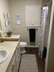 Guest bath - shower and tub