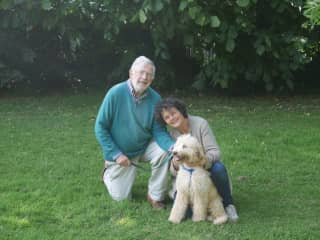 Pet-sit Dublin. Out in the park with Blaise, 'our' Golden-doodle for two weeks.