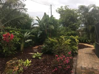 Luv to garden