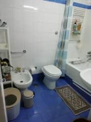 Guest bathroom with tub