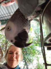 Ipo taking a selfie (photo bombed by Shannon)