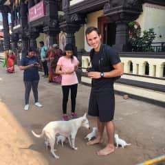 Saying hello to some pups in Udupi, India