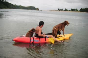 Miss Jessica Boo in the back.  Kevvie and Jak in the front. We often would kayak out to a beach . They were very well balanced!!!