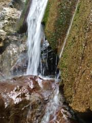 Rose Falls