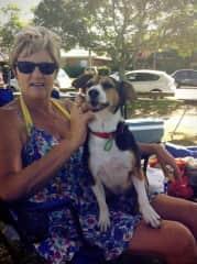 Rusty and my trusty lap