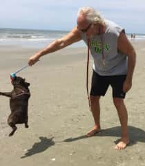 Vince and Winston playing on the beach in Isle of Palm, SC