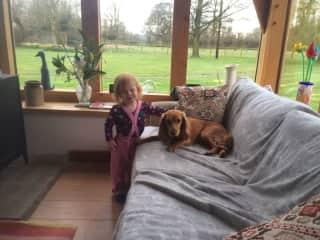 pet sitting in Frampton UK 2016