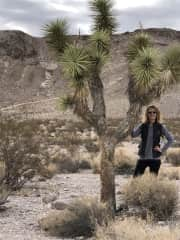 Exploring the desert in Nevada.