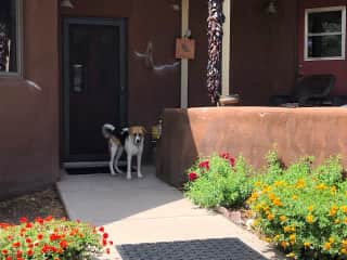 Etta at the front door.