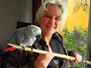 Sylvie with Jackoco, the grey parrot