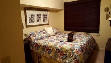 Bedroom/Nyx